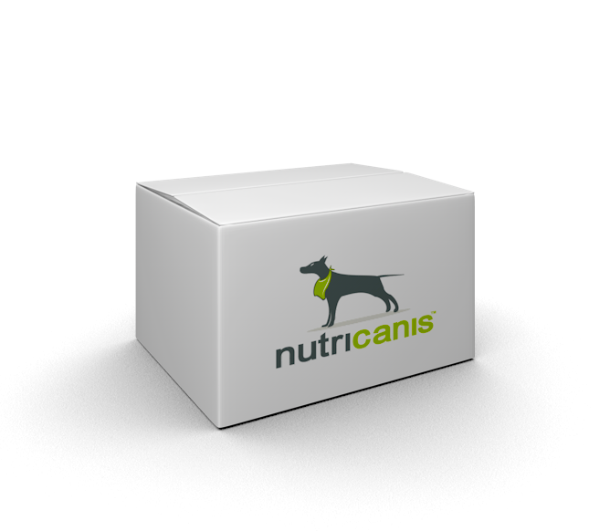 Adult wet dog food: 6 x 800g Horse + Cassava with milk thistle