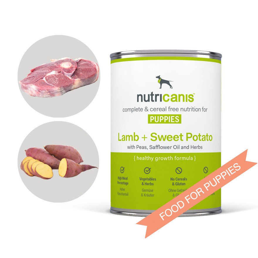 No Grain High Meat Content Dog Food