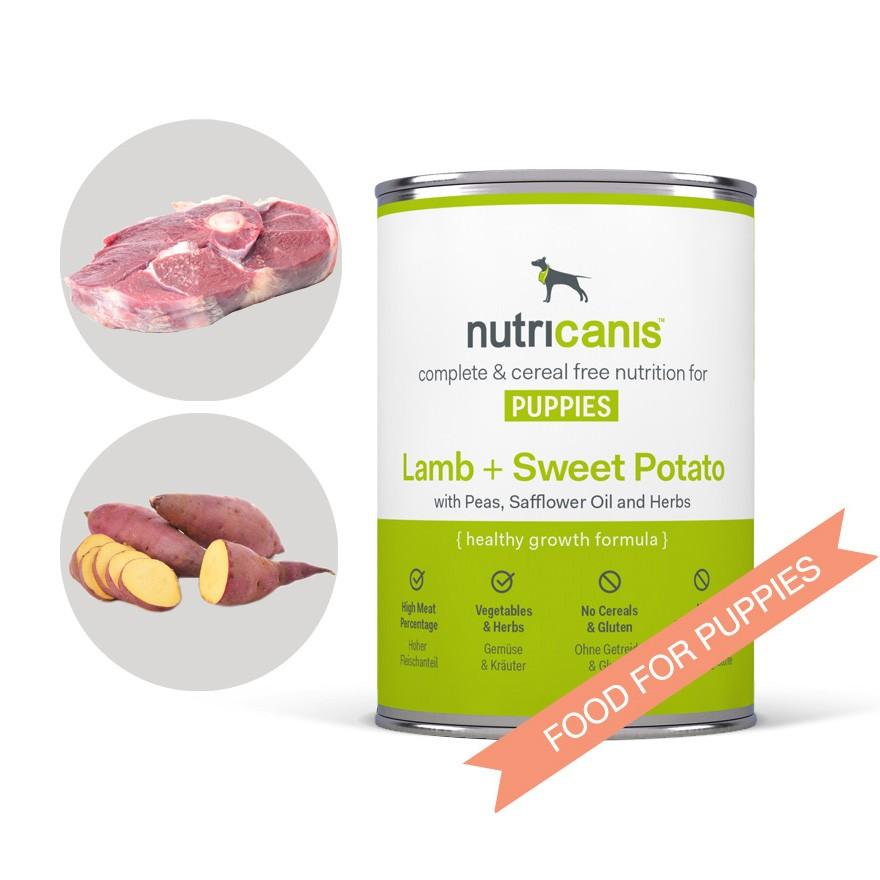 Potato Free Wet Dog Food